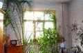 Двухкомнатная квартира в Бежицком районе г.Брянска